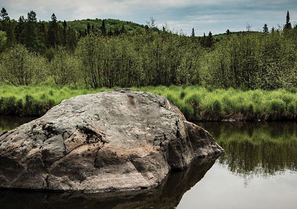 Ruisseau Jackson, aire protégée